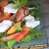 Pickled Nectarine & Burrata Salad