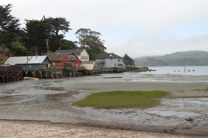 Oyster Bay - Houses
